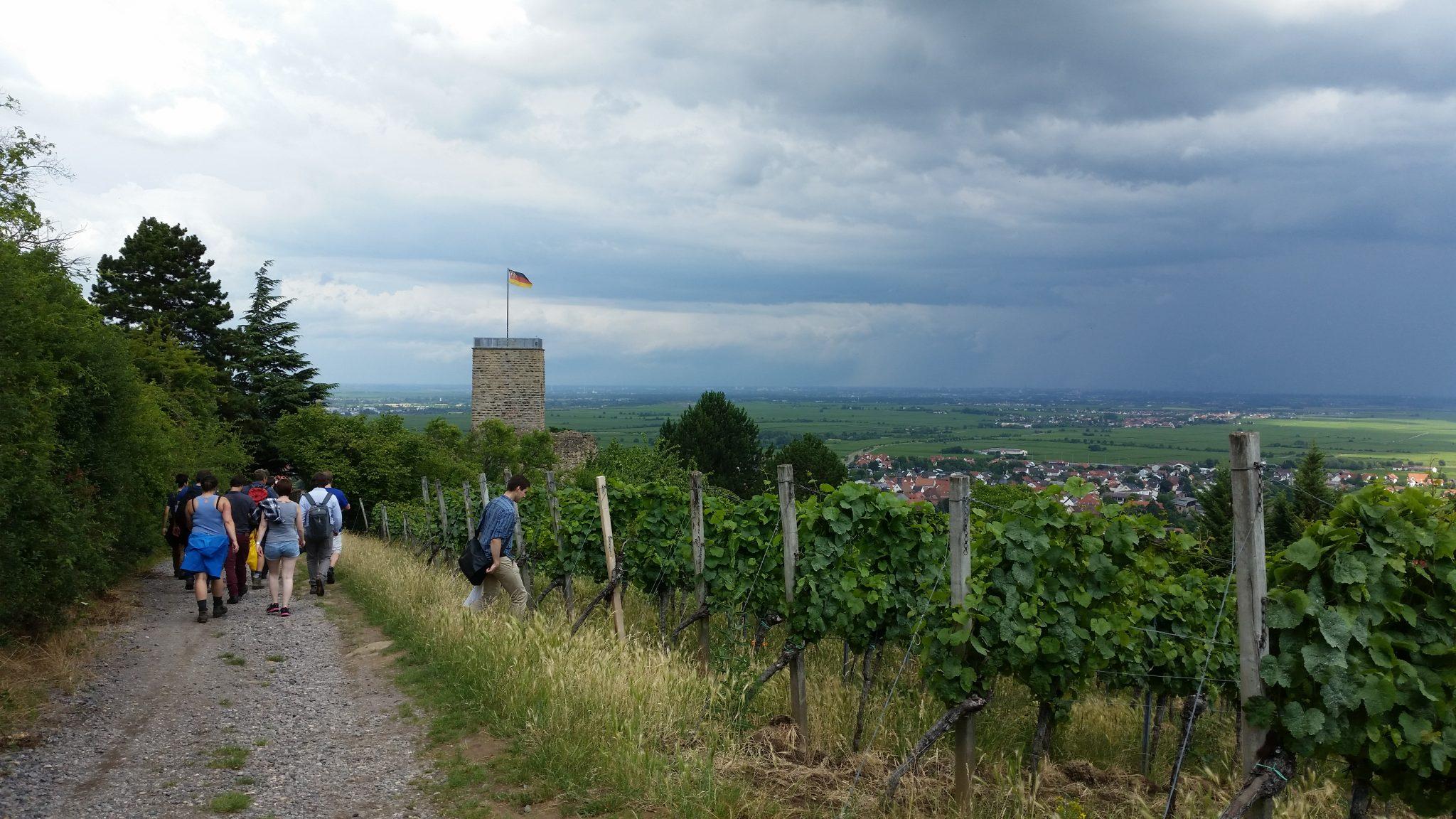Weinwanderung mit AH Klaus Hoppe